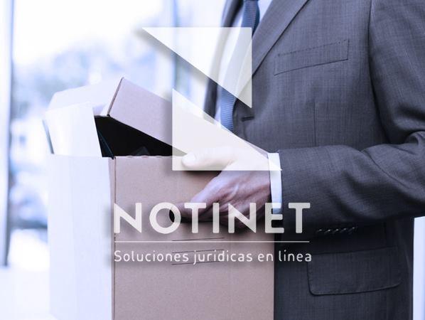 Notinet Legal - NOTINET LEGAL - NOVIEMBRE